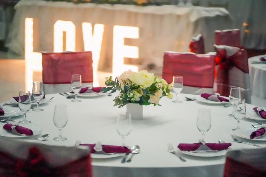 Velika sala za Venčanja, svadbe, rodjendane, krštenja